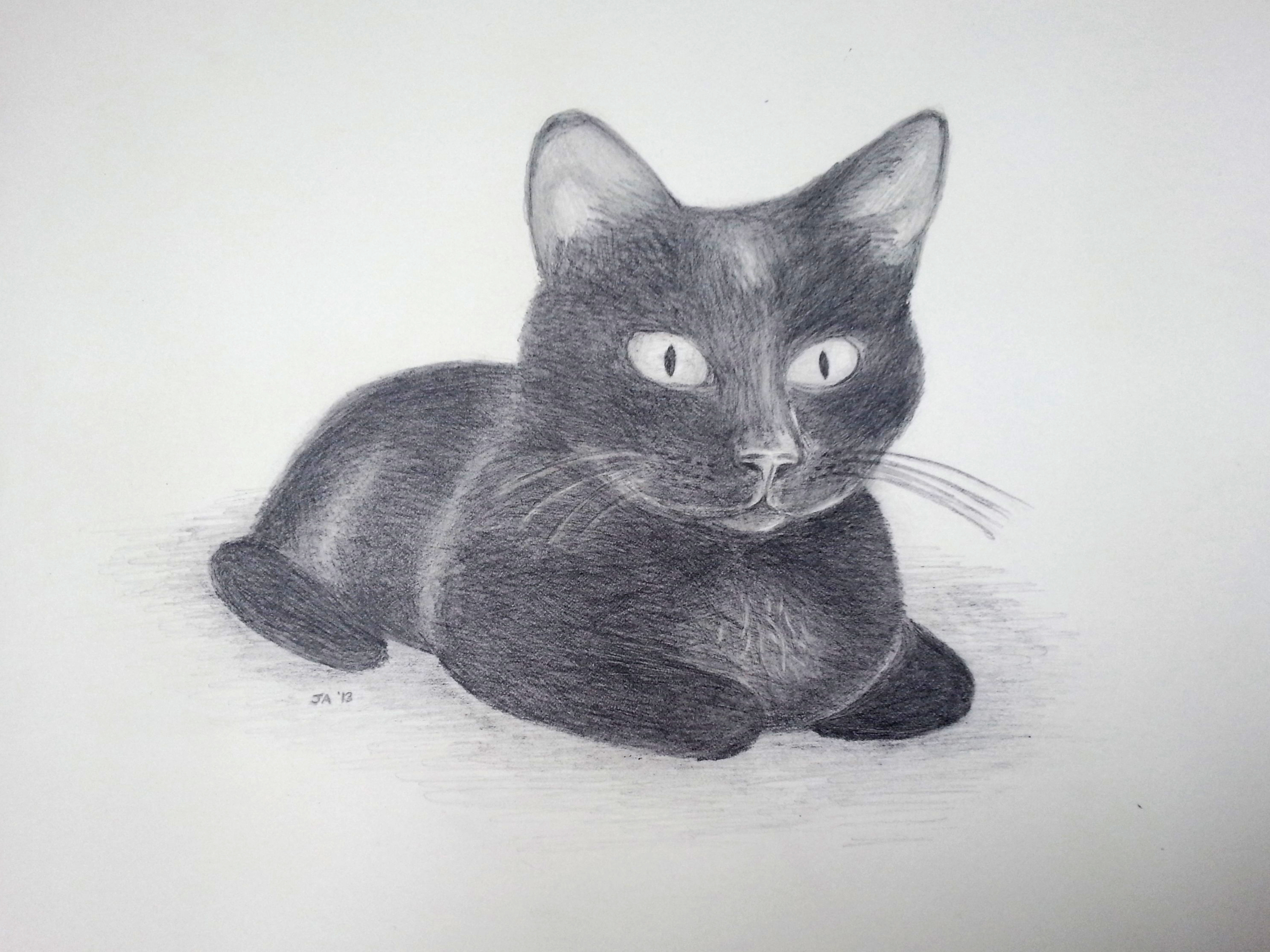 using a pencil for drawing Pencil drawing a beginner's guide  the ideal paper needed when making a drawing using color pencil is a fine-toothed paper hatching or cross-hatching.
